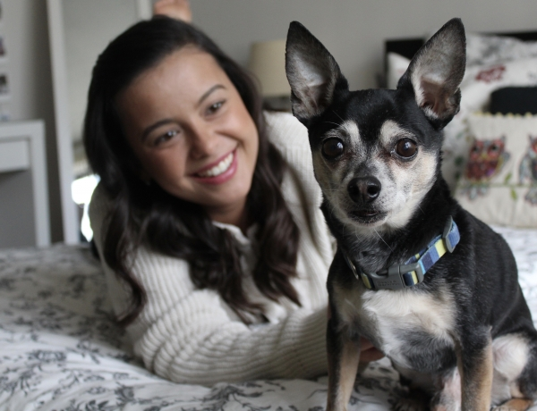 GRIEVING A DOG – FAREWELL MY LITTLE TOTO